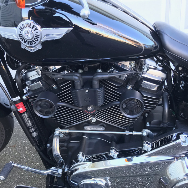 Love Jugs Warriors Harley - Flat Black